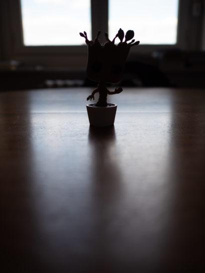 photo evaluative / matrix light measurement mode