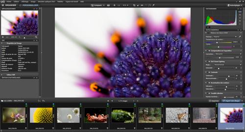 tutorial_dxo_optics_pro_nature_photo_01.jpg