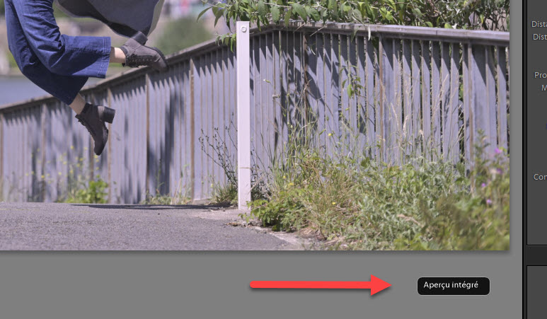 How to view Nikon Picture Control rendering in Lightroom
