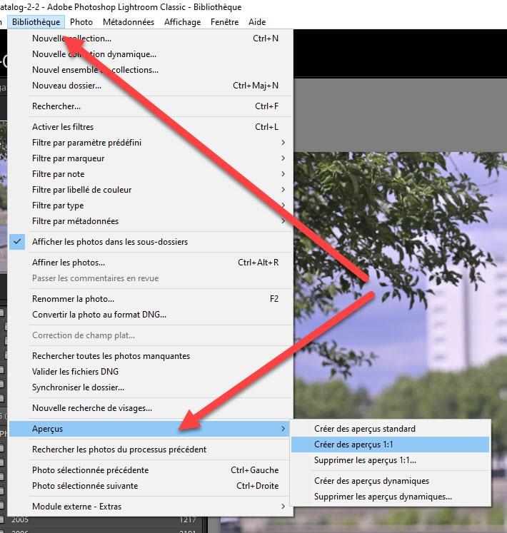 How to recreate Lightroom previews after importing
