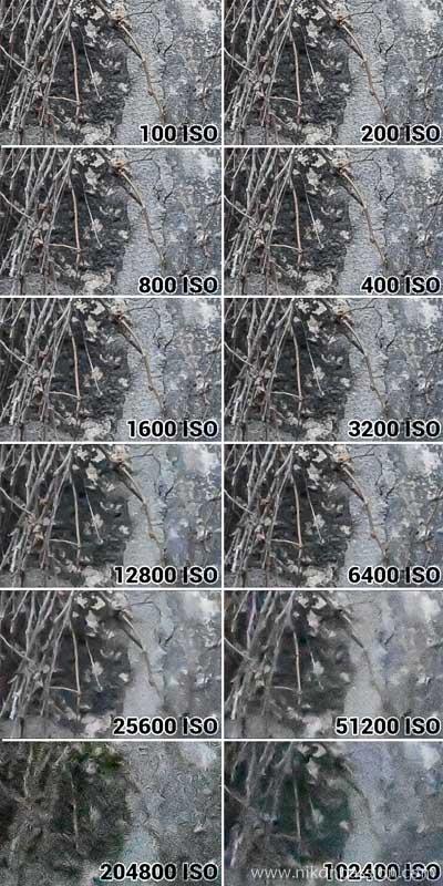 Nikon Z 50 ISO Sensor Sensitivity Test