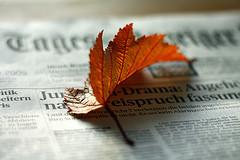 Autumn Newspaper Sheet