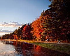 Autumn Golden Hours