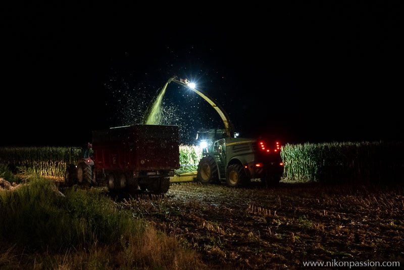 Corn silage in the Meuse region