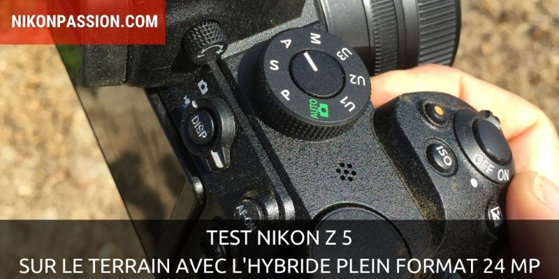 Nikon Z 5 Test: In the field with the 24 Mp full-format hybrid