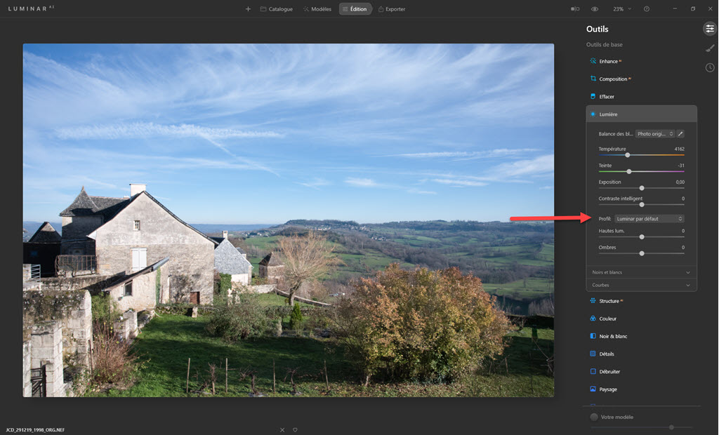 Nikon Picture Control with Luminar