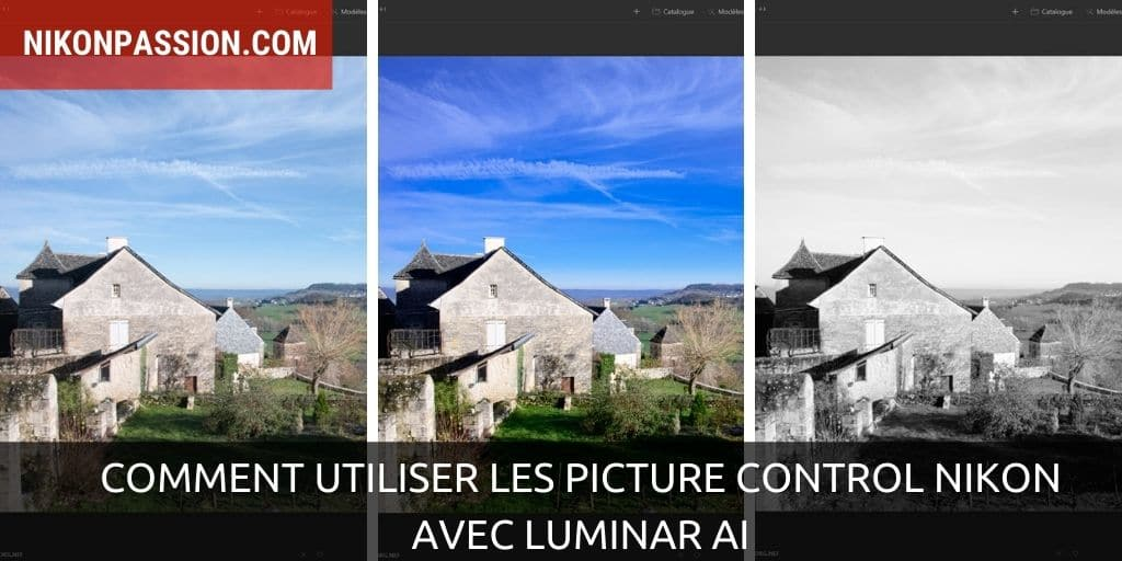 How to use Nikon Picture Controls with Luminar AI