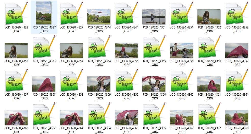 Nikon RAW (Nikon Electronic Format) files listed in Windows Explorer